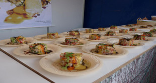 Dolphinfish gastronomic fair